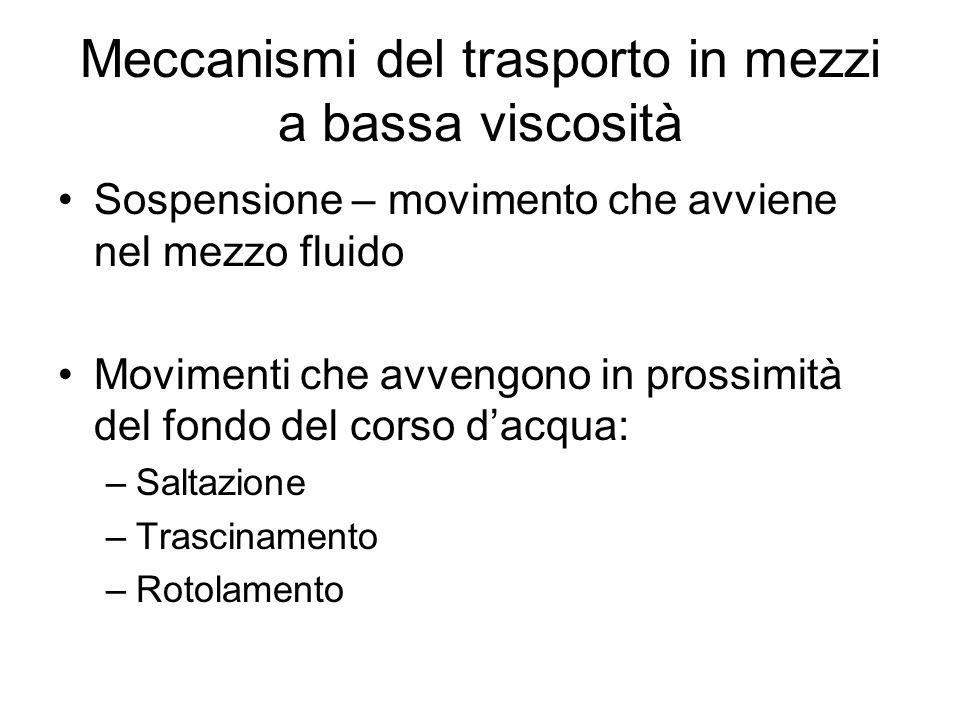 Meccanismi del trasporto in mezzi a bassa viscosità