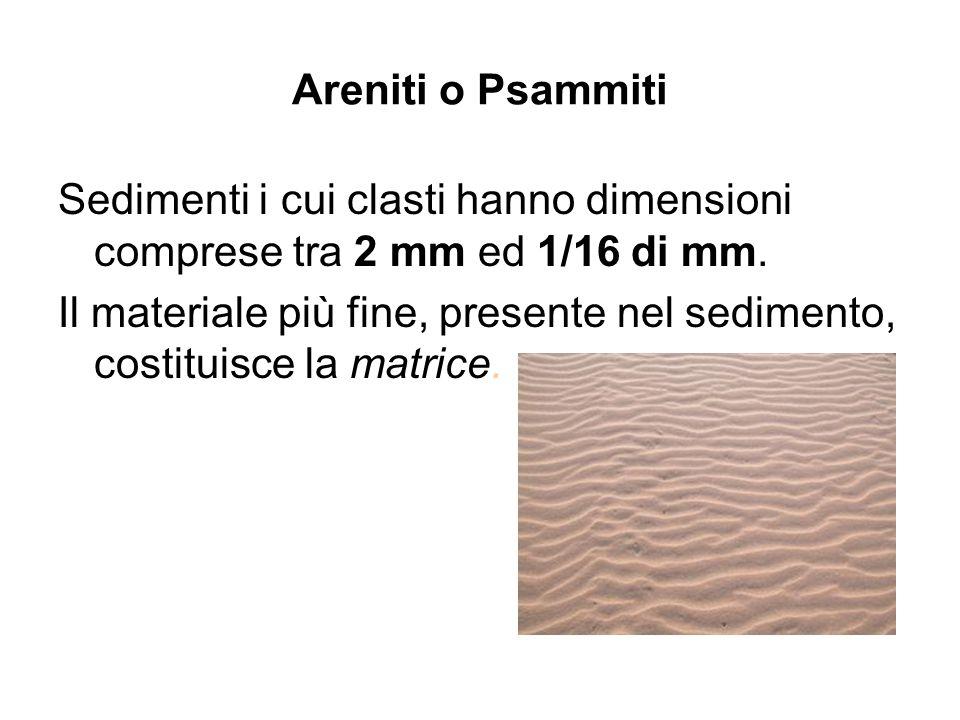 Areniti o Psammiti Sedimenti i cui clasti hanno dimensioni comprese tra 2 mm ed 1/16 di mm.