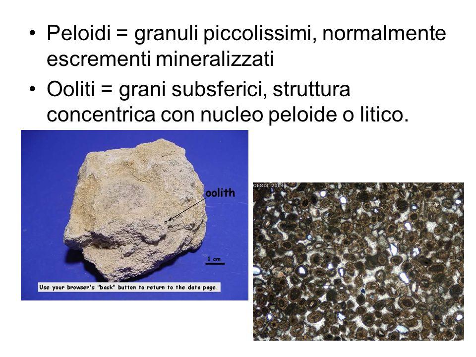 Peloidi = granuli piccolissimi, normalmente escrementi mineralizzati