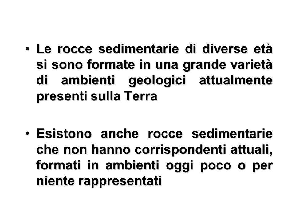 Le rocce sedimentarie di diverse età si sono formate in una grande varietà di ambienti geologici attualmente presenti sulla Terra