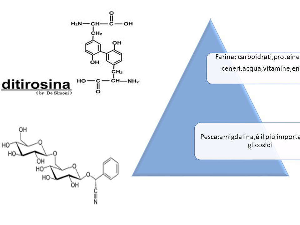 Farina: carboidrati,proteine,grassi ceneri,acqua,vitamine,enzimi