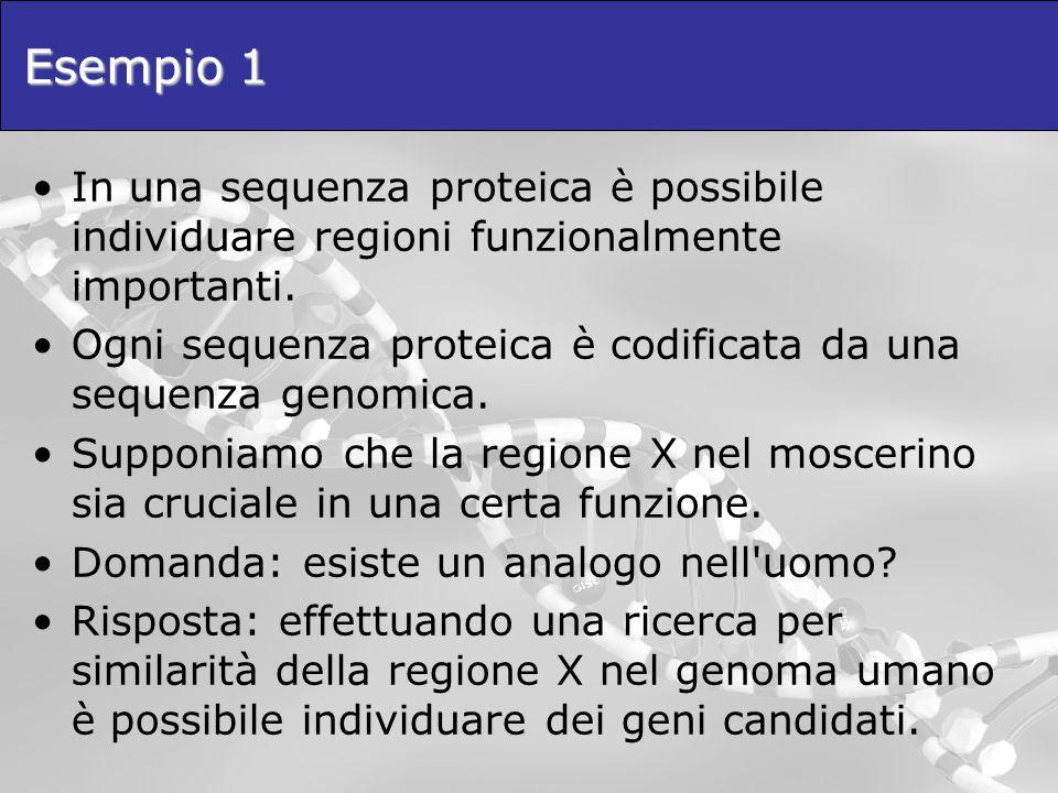 Esempio 1 In una sequenza proteica è possibile individuare regioni funzionalmente importanti.