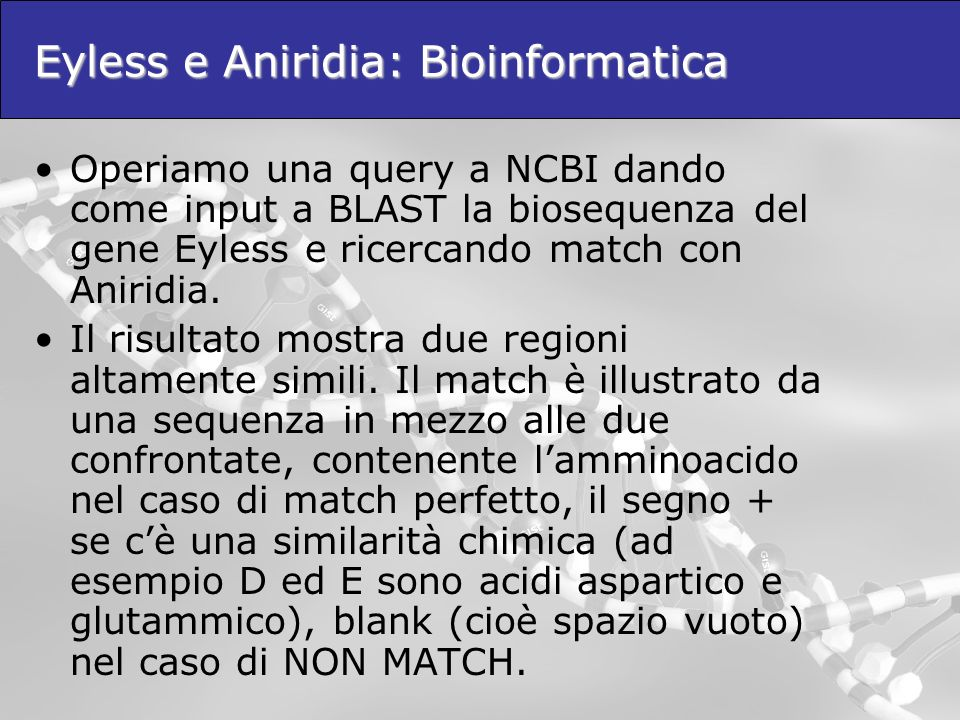 Eyless e Aniridia: Bioinformatica