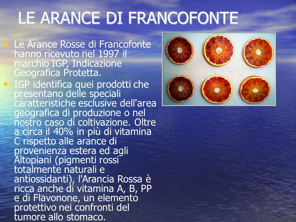 LE ARANCE DI FRANCOFONTE