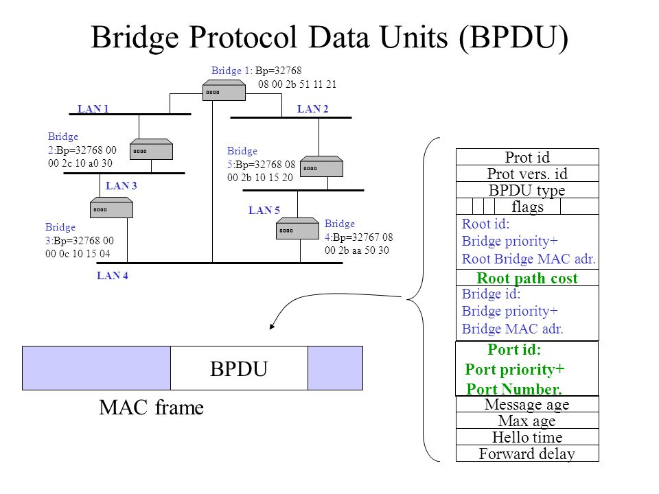 Bridge Protocol Data Units (BPDU)