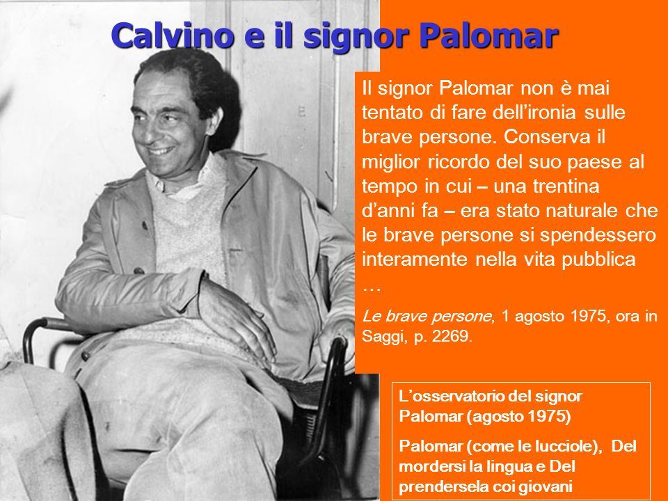 Calvino e il signor Palomar