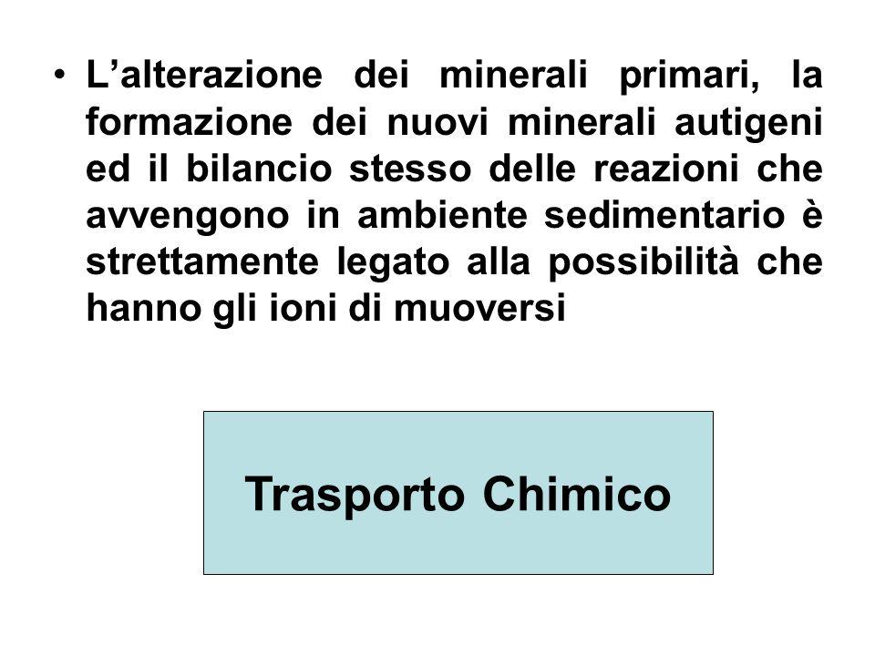 L'alterazione dei minerali primari, la formazione dei nuovi minerali autigeni ed il bilancio stesso delle reazioni che avvengono in ambiente sedimentario è strettamente legato alla possibilità che hanno gli ioni di muoversi
