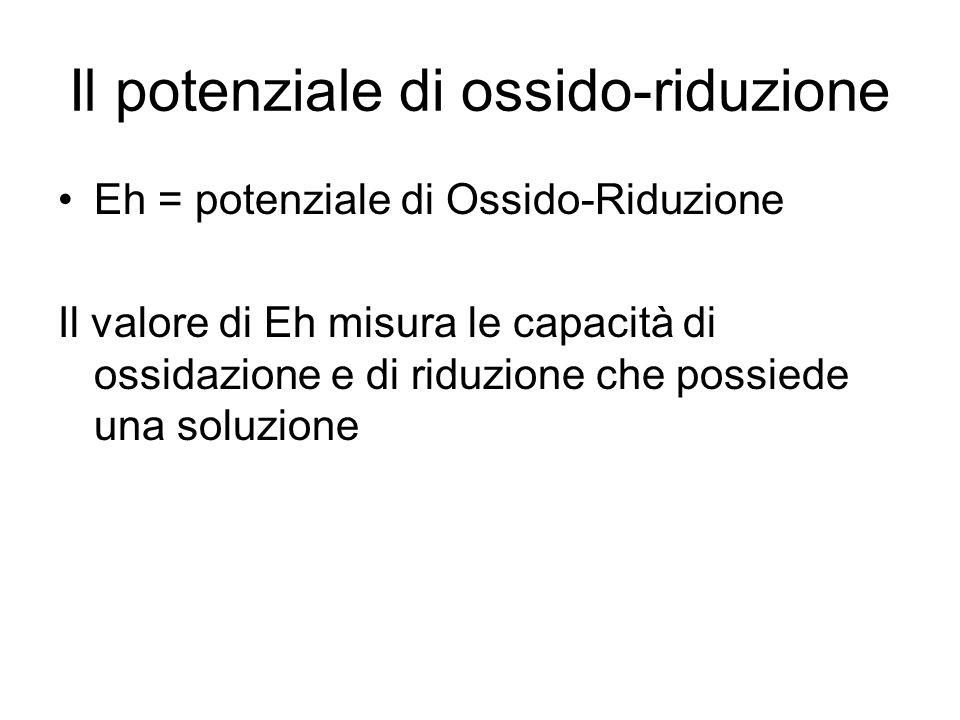 Il potenziale di ossido-riduzione