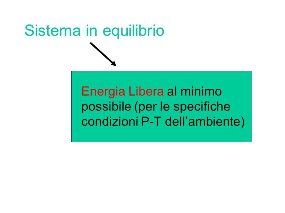 Sistema in equilibrio Energia Libera al minimo possibile (per le specifiche condizioni P-T dell'ambiente)