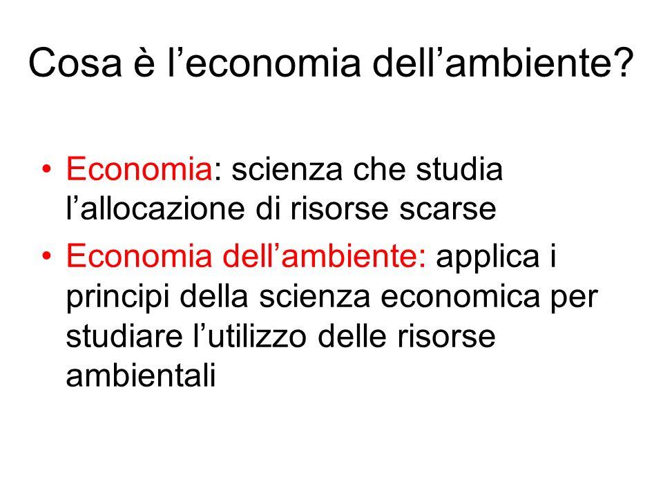 Cosa è l'economia dell'ambiente