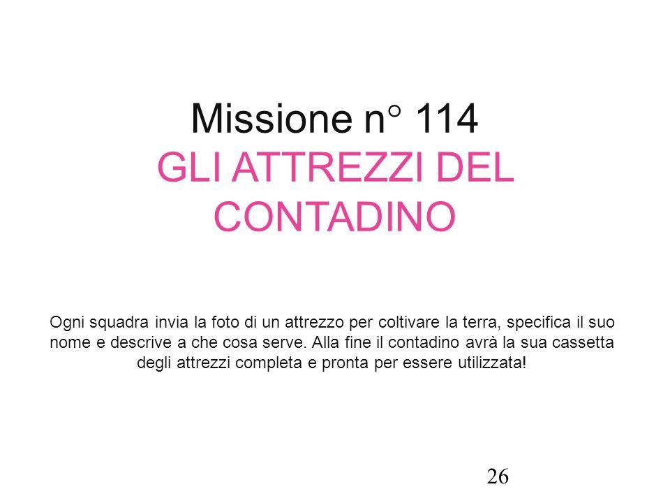 Missione n° 114 GLI ATTREZZI DEL CONTADINO