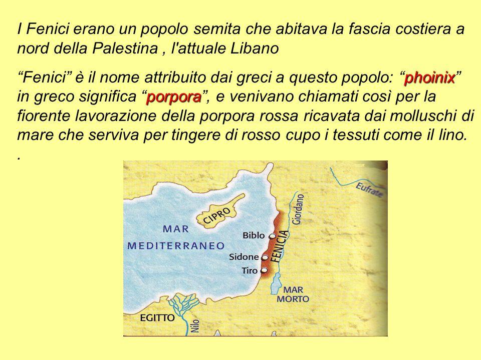 I Fenici erano un popolo semita che abitava la fascia costiera a nord della Palestina , l attuale Libano