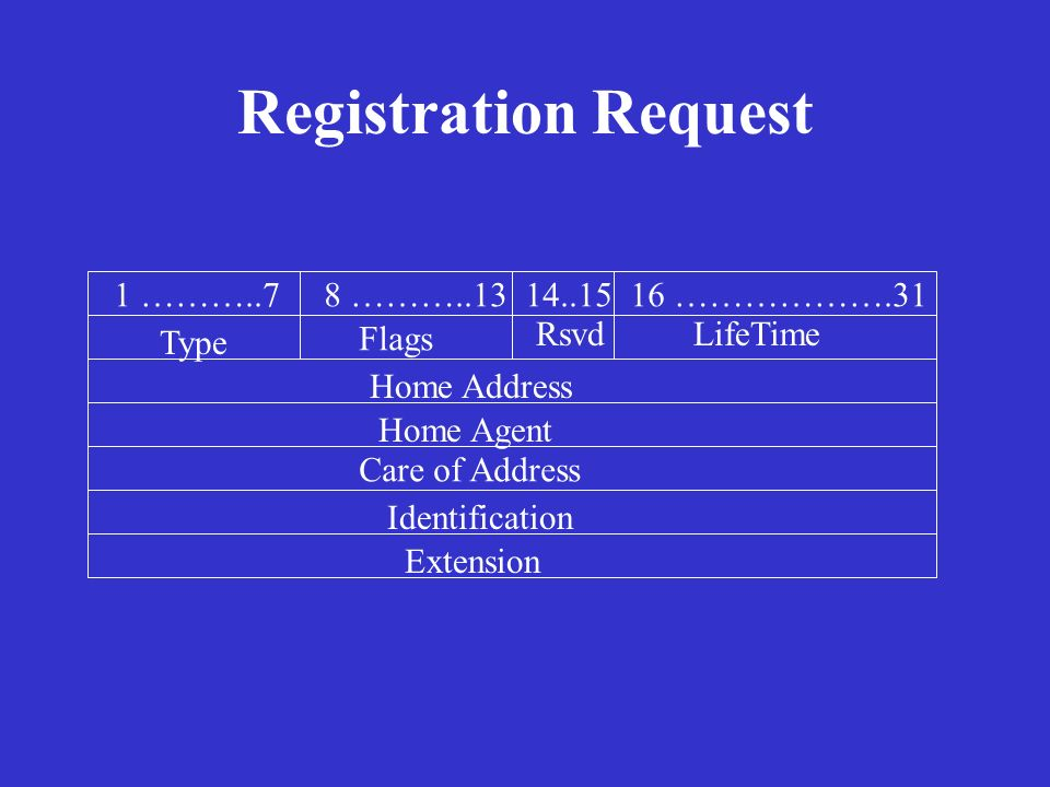 Registration Request 1 ………..7 8 ………..13 14..15 16 ……………….31 Type Flags