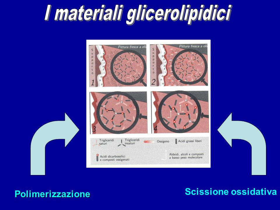 I materiali glicerolipidici