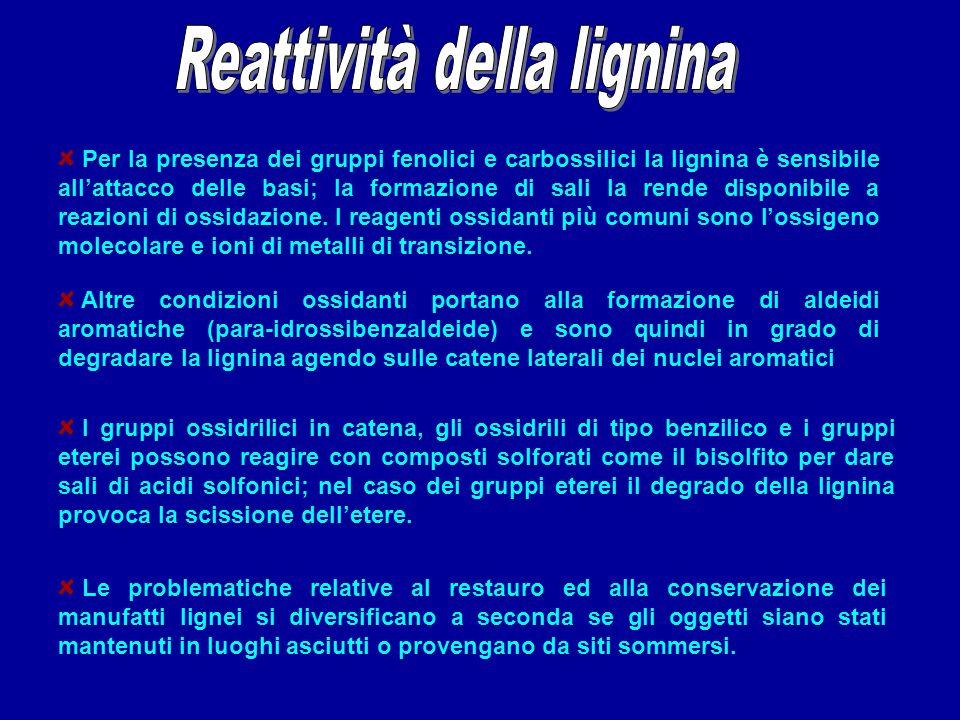 Reattività della lignina