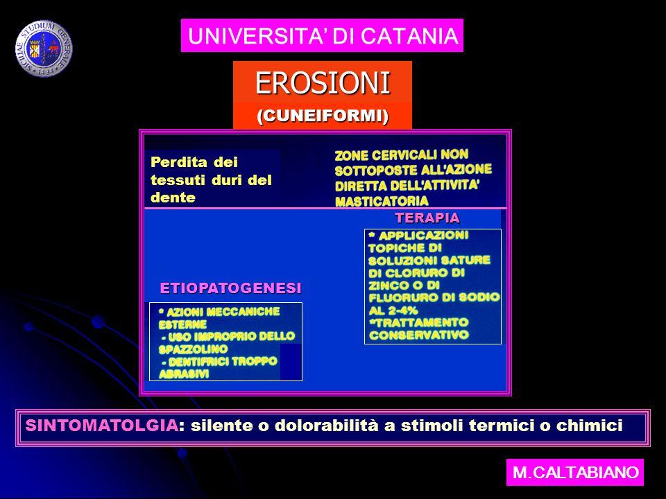 EROSIONI UNIVERSITA' DI CATANIA (CUNEIFORMI)
