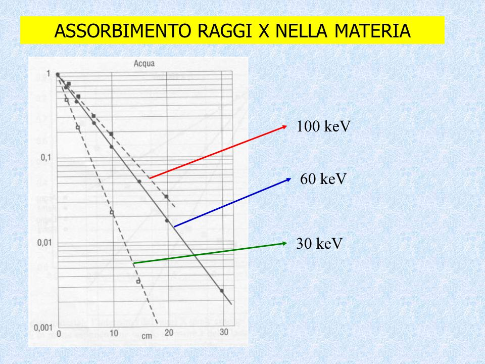 ASSORBIMENTO RAGGI X NELLA MATERIA