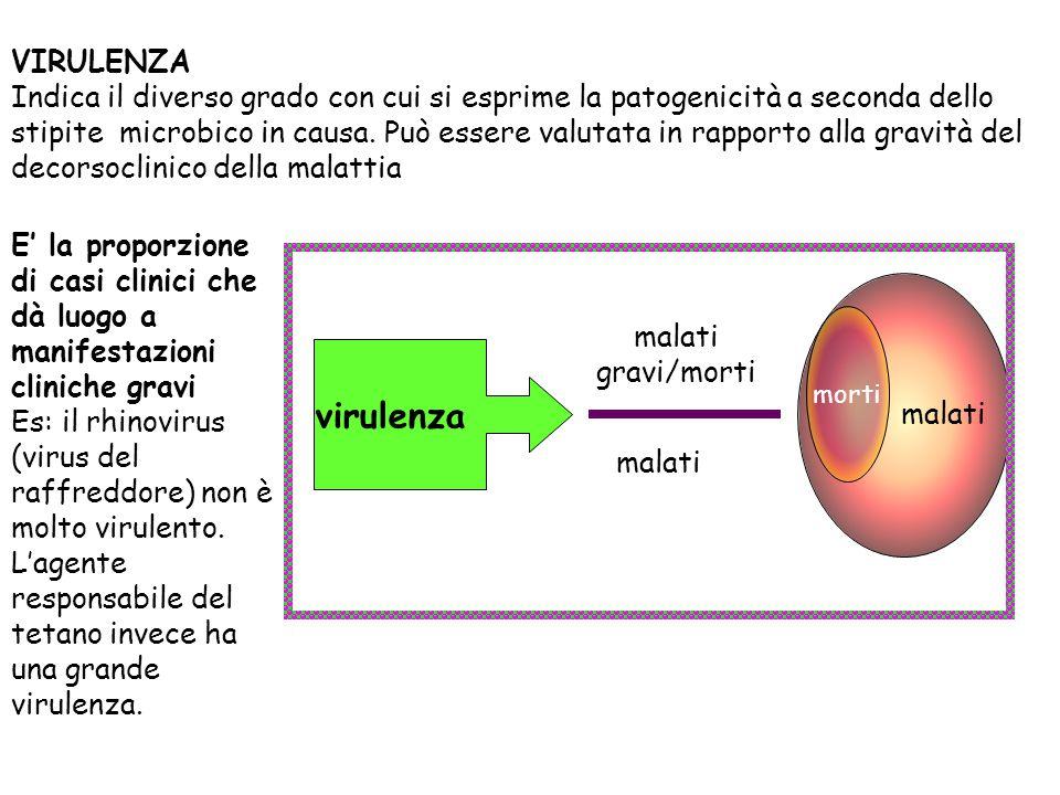 VIRULENZA