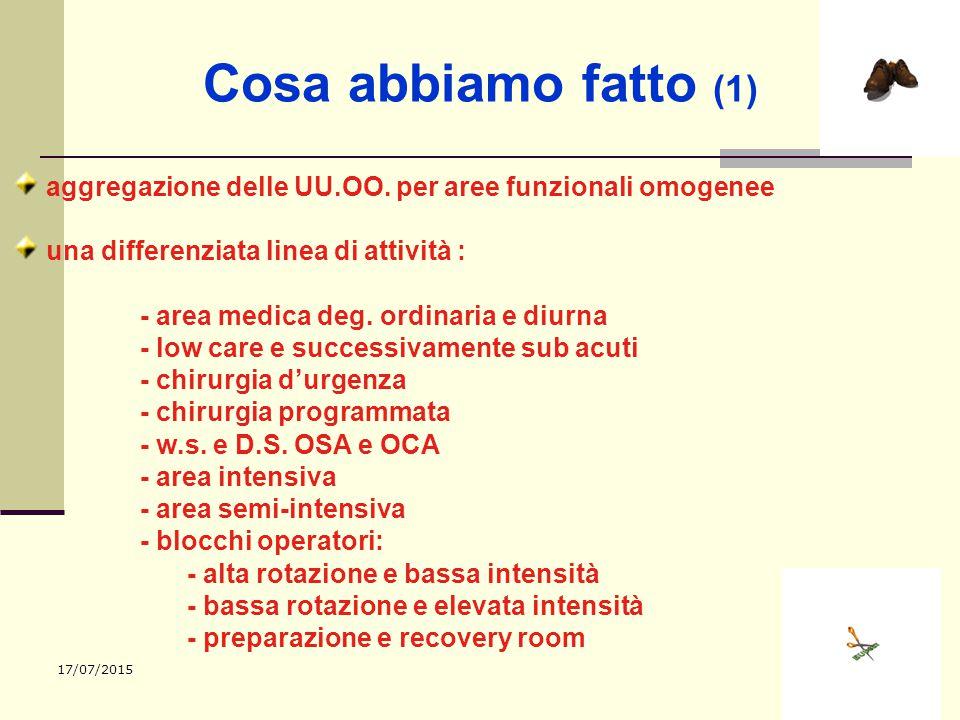 Cosa abbiamo fatto (1) aggregazione delle UU.OO. per aree funzionali omogenee. una differenziata linea di attività :