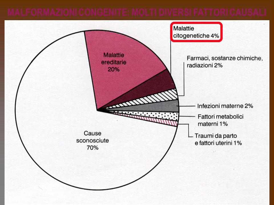 MALFORMAZIONI CONGENITE: MOLTI DIVERSI FATTORI CAUSALI