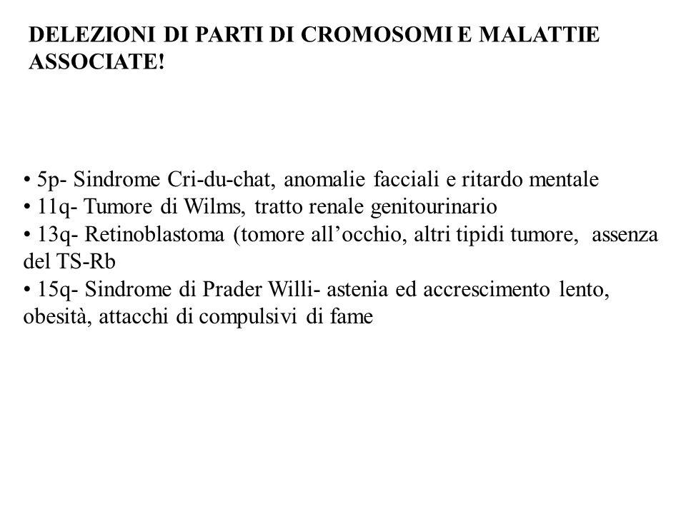 DELEZIONI DI PARTI DI CROMOSOMI E MALATTIE ASSOCIATE!