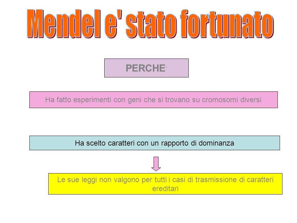 Mendel e stato fortunato