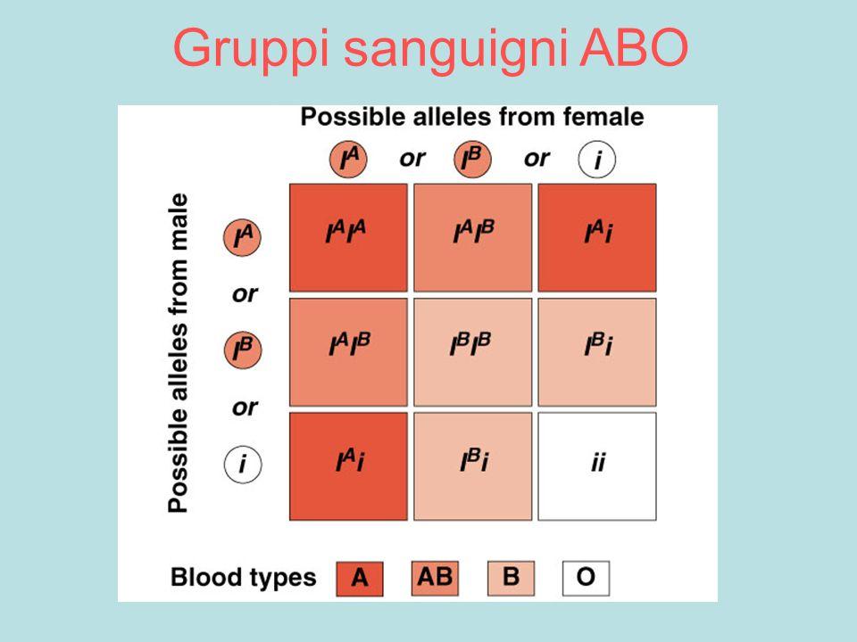 Gruppi sanguigni ABO