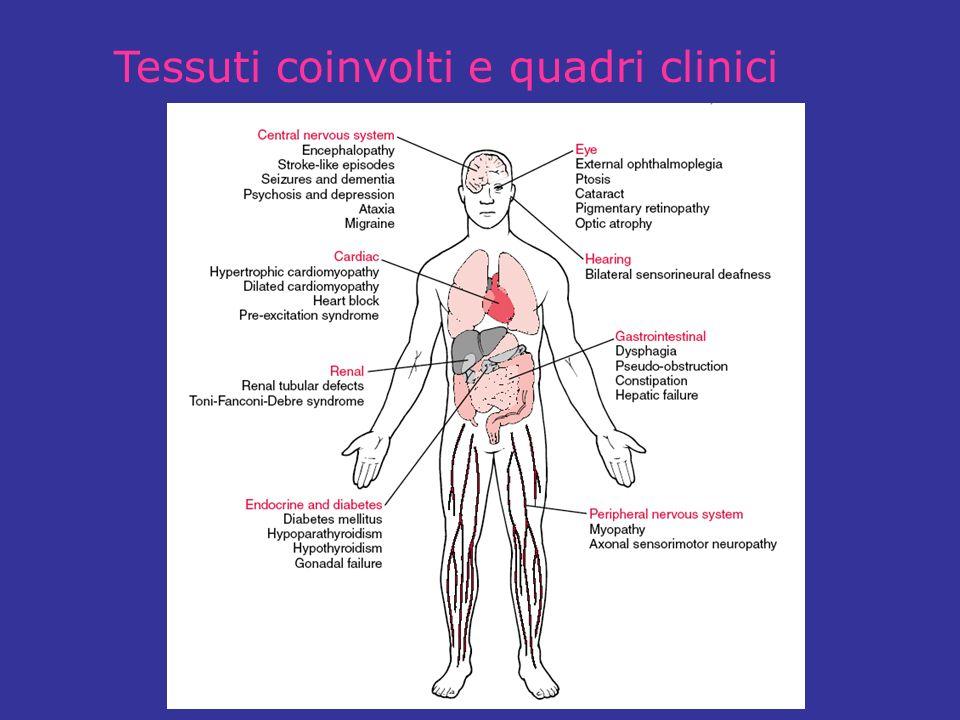 Tessuti coinvolti e quadri clinici
