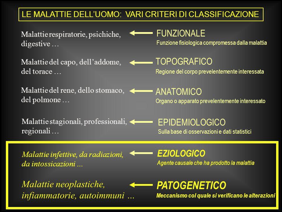 PATOGENETICO FUNZIONALE TOPOGRAFICO ANATOMICO EPIDEMIOLOGICO