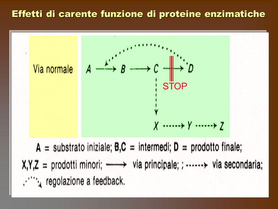 Effetti di carente funzione di proteine enzimatiche
