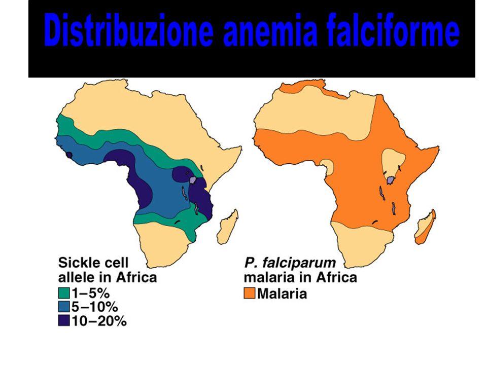 Distribuzione anemia falciforme