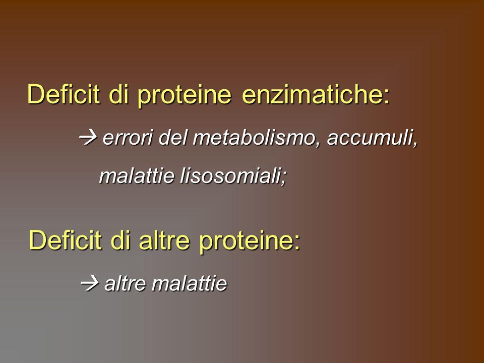Deficit di proteine enzimatiche: