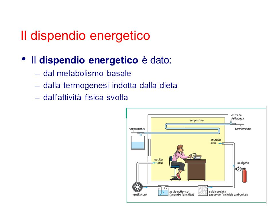 Il dispendio energetico