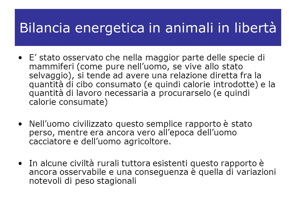 Bilancia energetica in animali in libertà