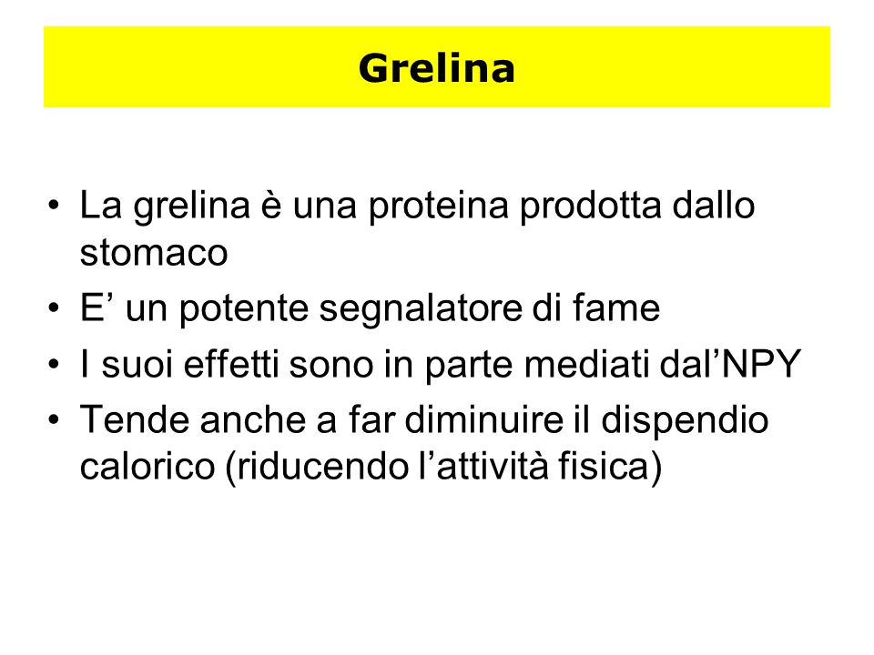 GrelinaLa grelina è una proteina prodotta dallo stomaco. E' un potente segnalatore di fame. I suoi effetti sono in parte mediati dal'NPY.