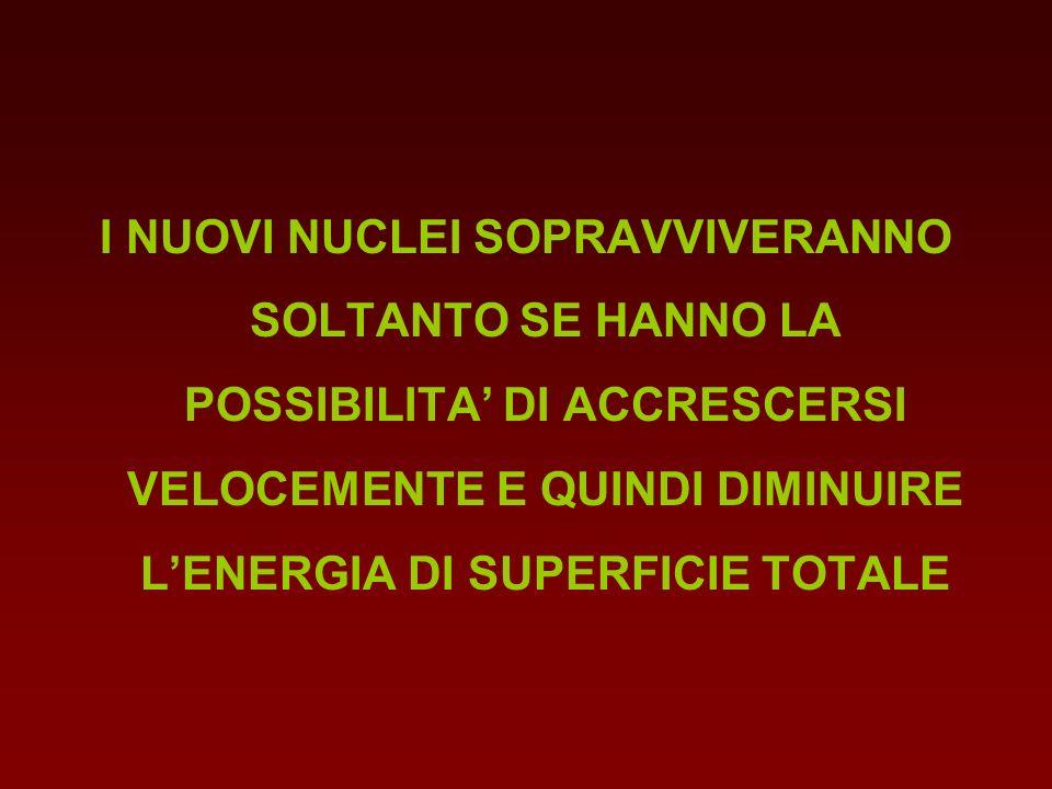 I NUOVI NUCLEI SOPRAVVIVERANNO SOLTANTO SE HANNO LA POSSIBILITA' DI ACCRESCERSI VELOCEMENTE E QUINDI DIMINUIRE L'ENERGIA DI SUPERFICIE TOTALE