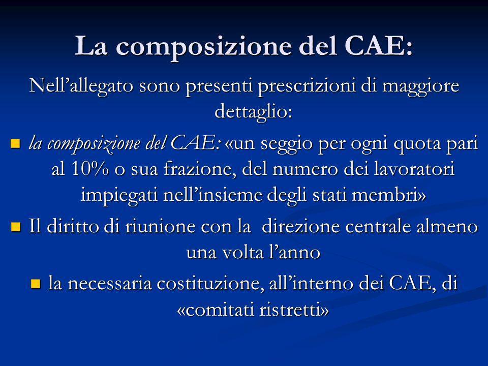La composizione del CAE: