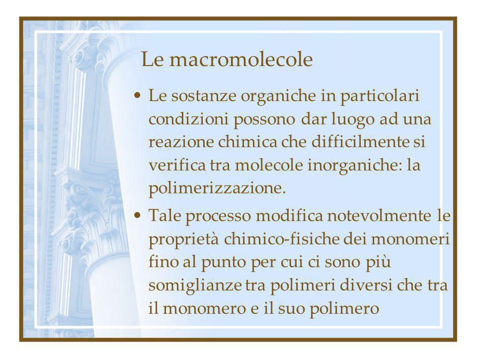 Le macromolecole
