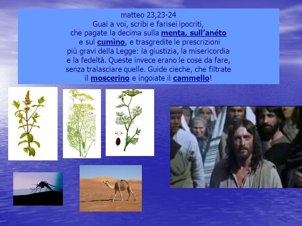 Guai a voi, scribi e farisei ipocriti,