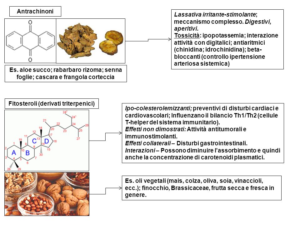 Fitosteroli (derivati triterpenici)
