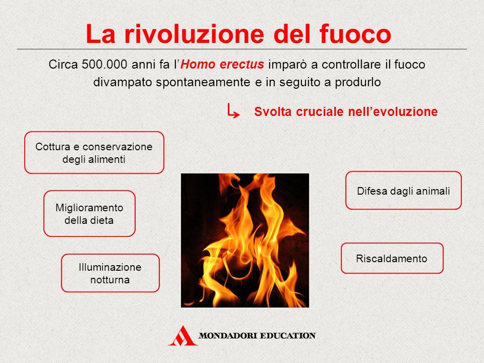 La rivoluzione del fuoco
