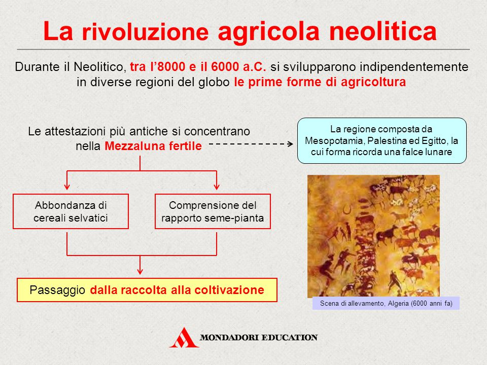 La rivoluzione agricola neolitica