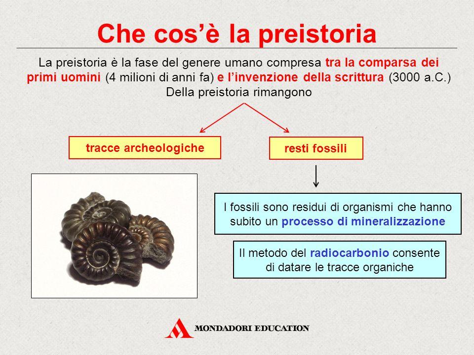 Che cos'è la preistoria