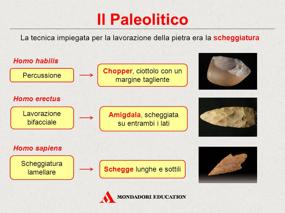 Il Paleolitico La tecnica impiegata per la lavorazione della pietra era la scheggiatura. Percussione.