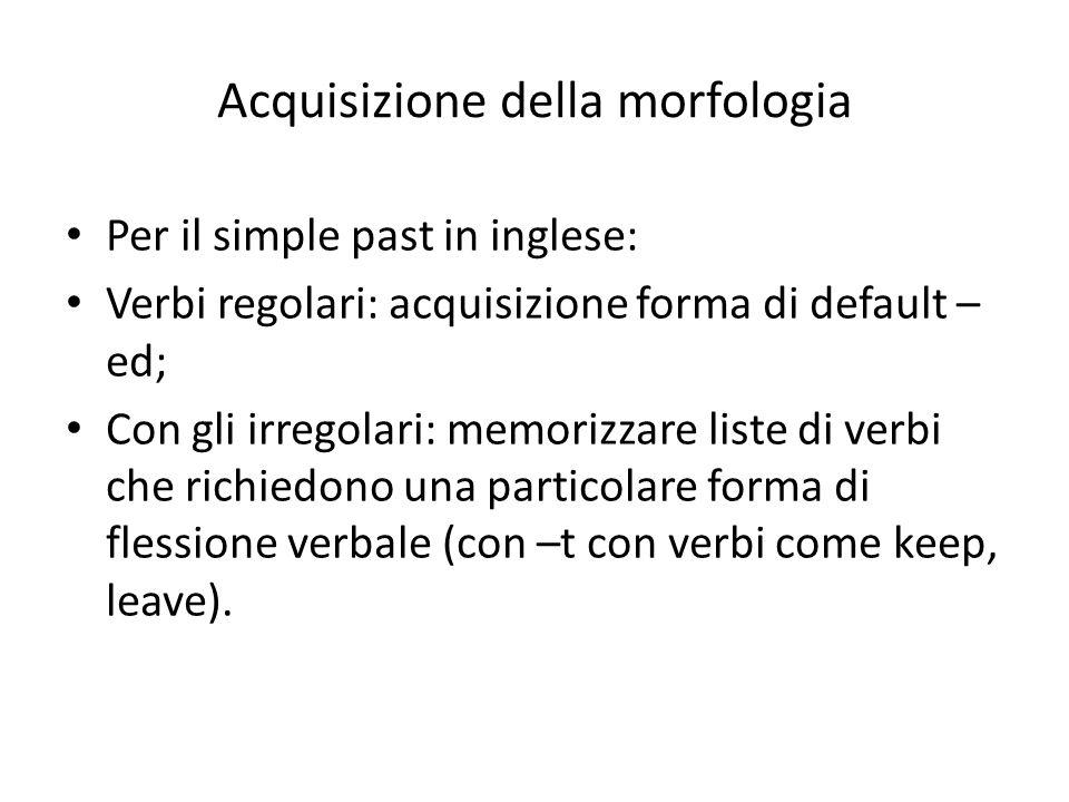 Acquisizione della morfologia