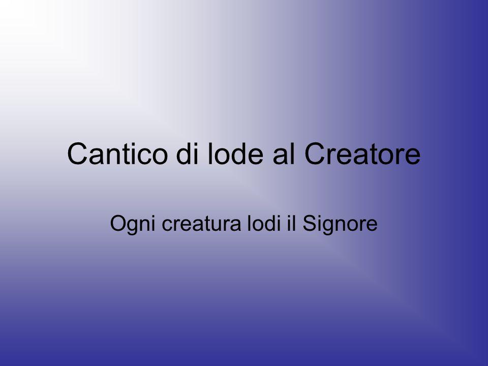Cantico di lode al Creatore