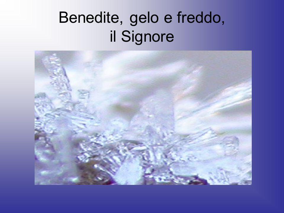 Benedite, gelo e freddo, il Signore