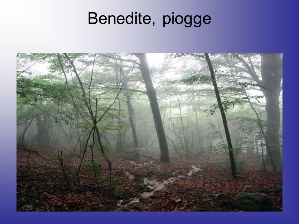 Benedite, piogge