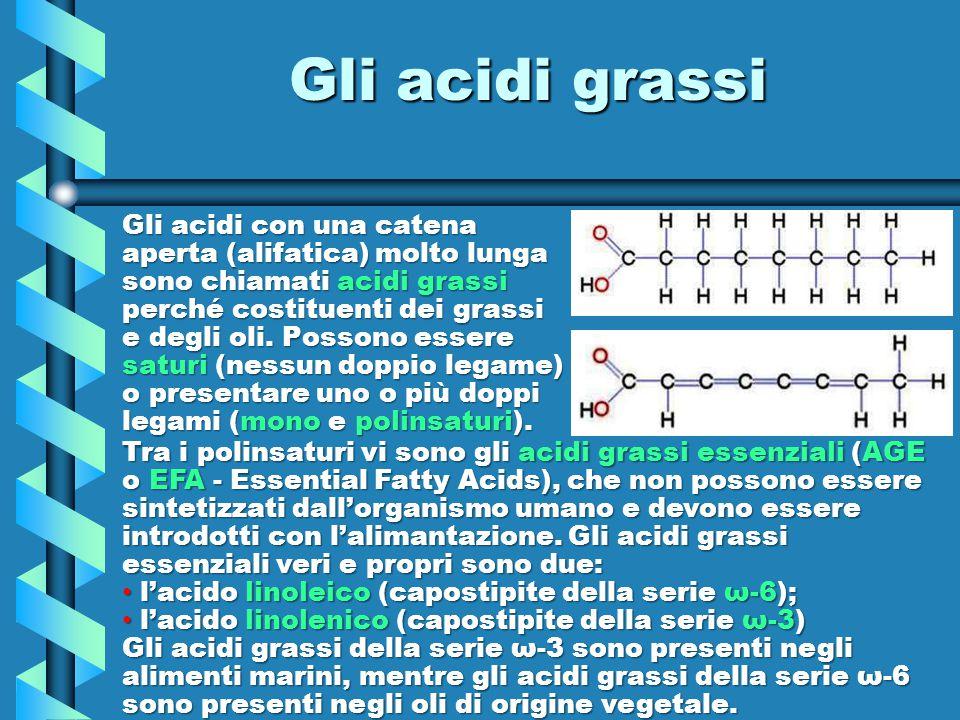 Gli acidi grassi