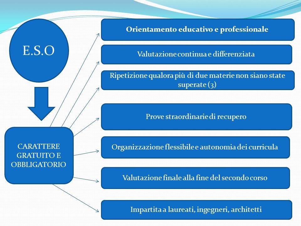 Orientamento educativo e professionale